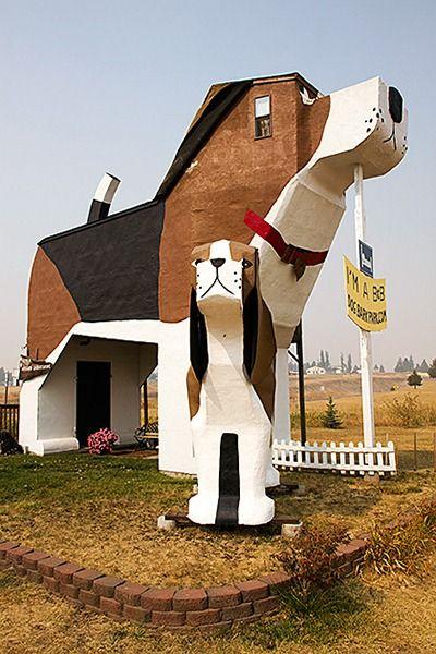 Cottonwood, USA-Dog Hotel in Cottonwood, Idaho.
