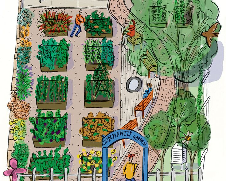 6 Steps To Starting A Community Garden  http://www.rodalesorganiclife.com/garden/6-steps-to-starting-a-community-garden?cid=soc_Rodale%2527s%2520Organic%2520Life%2520-%2520RodalesOrganicLife_FBPAGE_Rodale%2527s%2520Organic%2520Life__