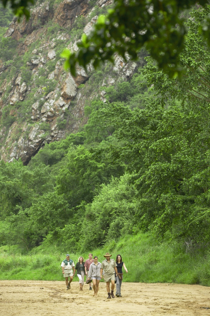 Walk with one of our experienced trails guides as they lead you through the African bushveld