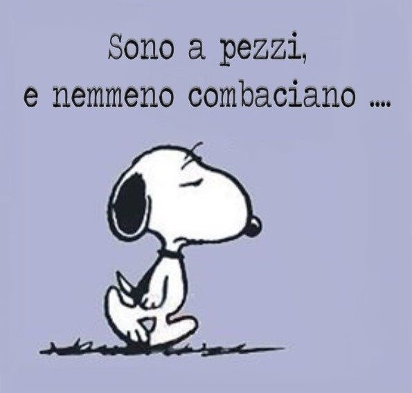 Snoopy... @rt&misi@.