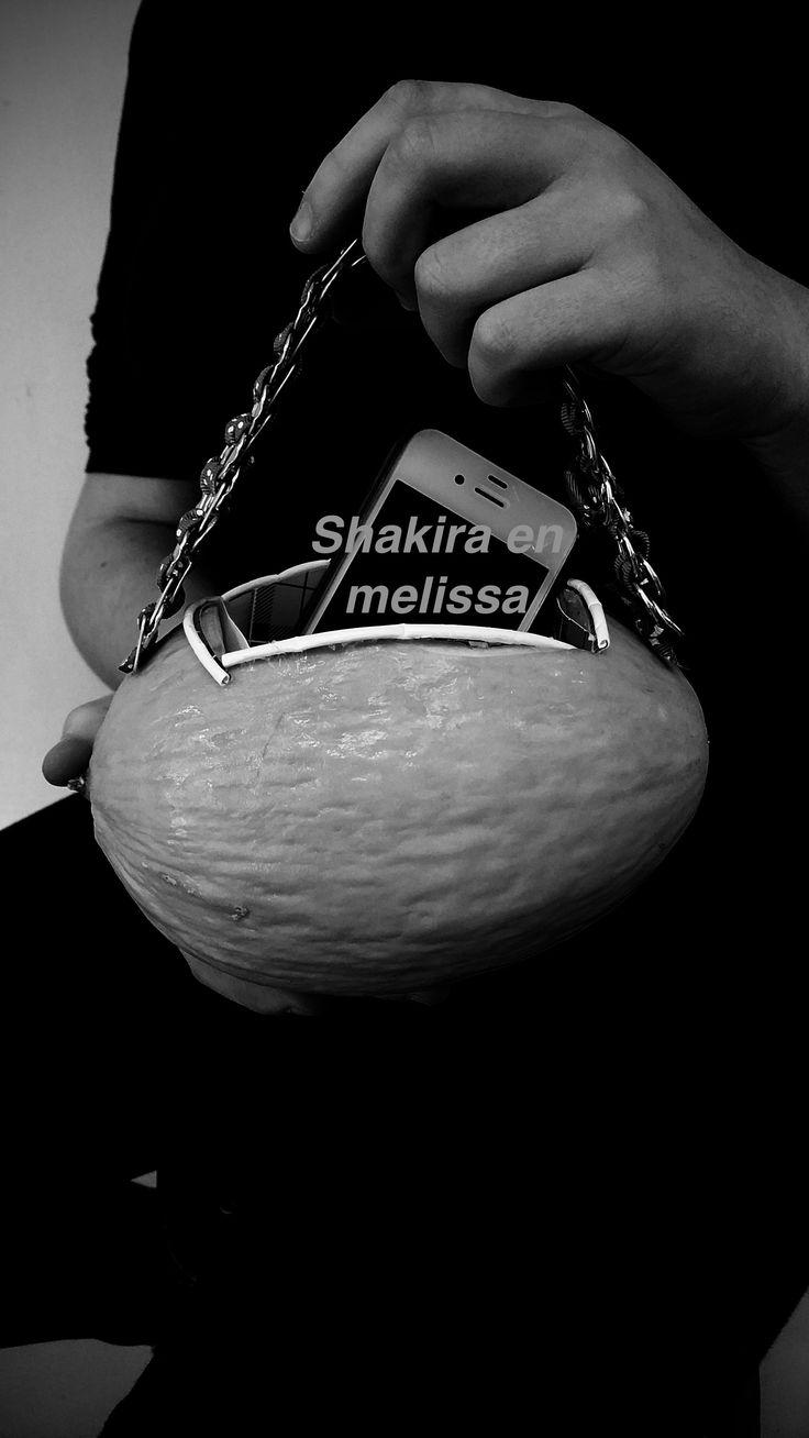 Pin by MelissaHass on Melissa&Shakira Tas | Pinterest Shakira