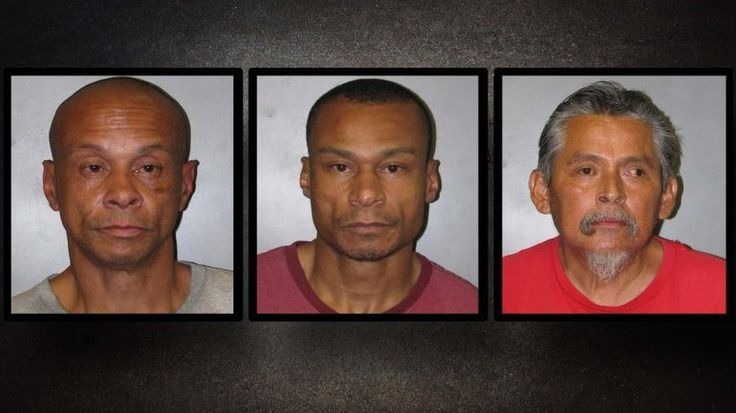 Private Officer Breaking News: 4 people arrested after theft at Harris County Home Depot (Harris County, Texas May 2 2017) The four suspect thieves, SALVADOR DELGADO, 50; CHAYNE CROSSLEY, 42; ELLIS CROSSLEY, 47; and a woman who has not yet been formally charged attempted to steal $1100.00 worth of merchandise from Home Depot.