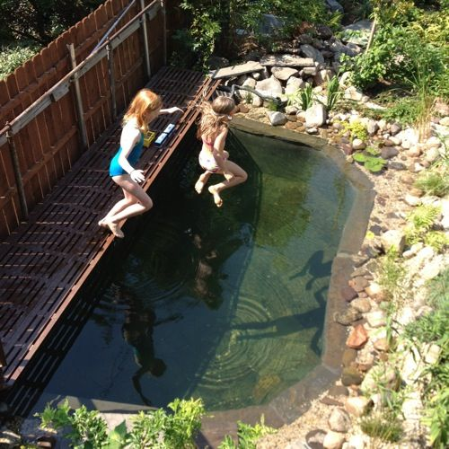 Gennaro Brooks-Church of Eco Brooklyn added a chemical-free pond to the backyard of his Carroll Gardens house