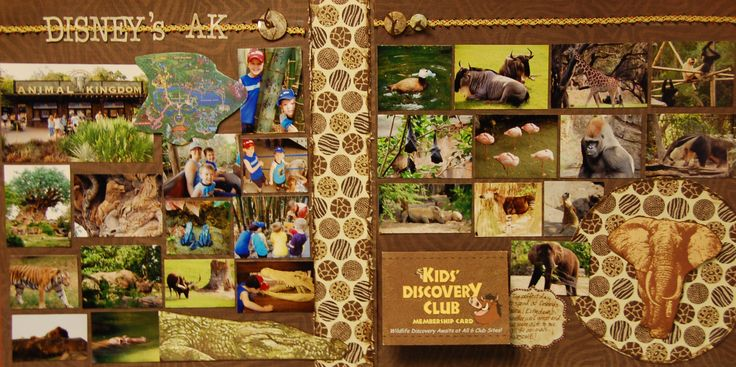 Disney's AK - Scrapbook.com - What a gorgeous 2 page layout. #scrapbooking #disney #diecutswithaview