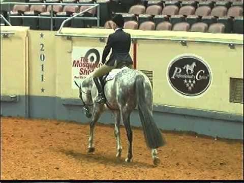 The ideal ENGLISH PLEASURE horse 2011 AQHA World Show TOP TEN Hunter Under Saddle mp4