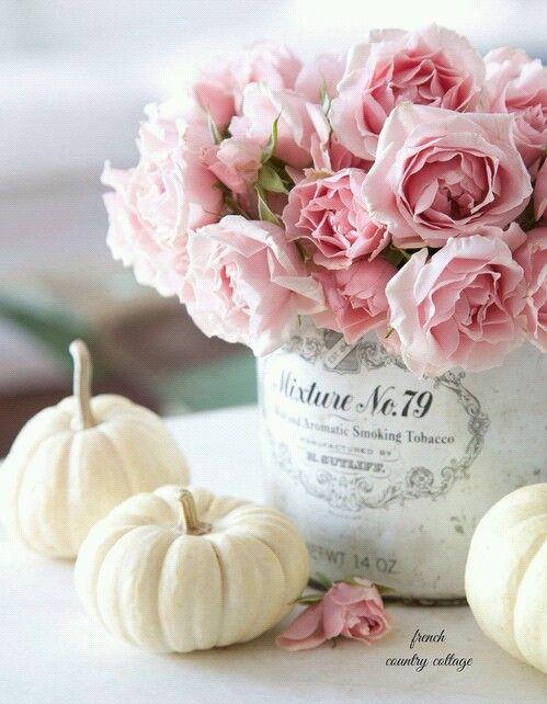 de fleur(s), fleurs, frais, rose, fond d'écran