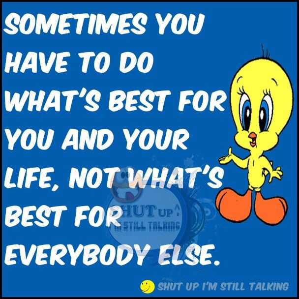 Cartoon Quotes: 465 Best TWEETY BIRD Images On Pinterest