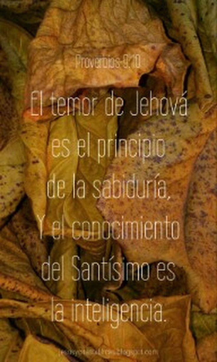 El temor de Jehová es el principio de la sabiduría,Y el conocimiento del Santísimo es la inteligencia. Proverbios 9:10 Te invito a recibir a Cristo com... - Jesús Y Citas Bíblicas - Google+