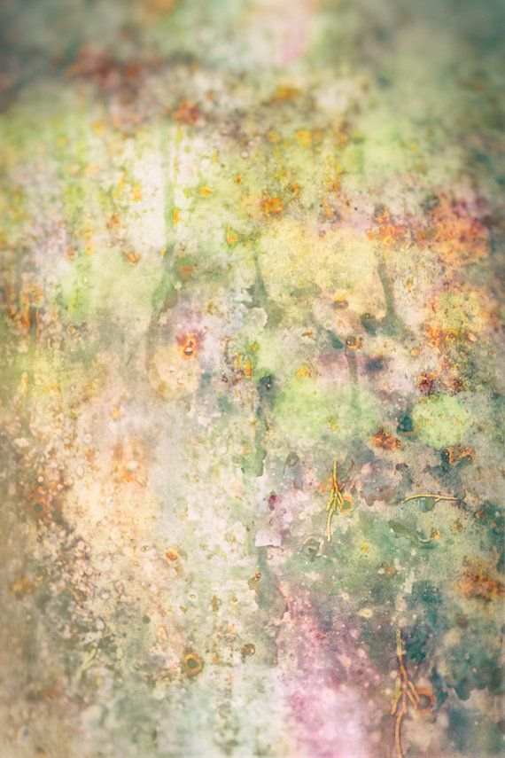 Abstract Photography garden flowers orange yellow by LynnLangmade