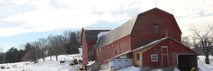 Barre Vermont farm 1/2015