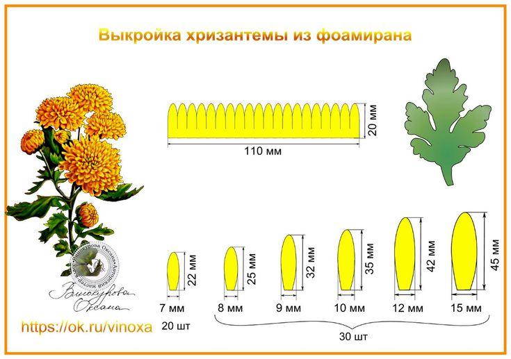 vHQMDVPDQNw.jpg (1280×900)