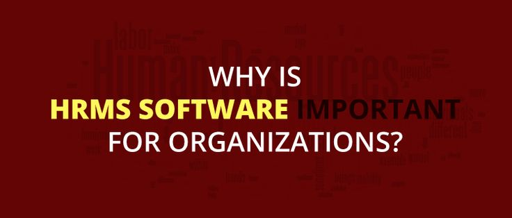 Why Is #HRMS Software Important for Organizations?