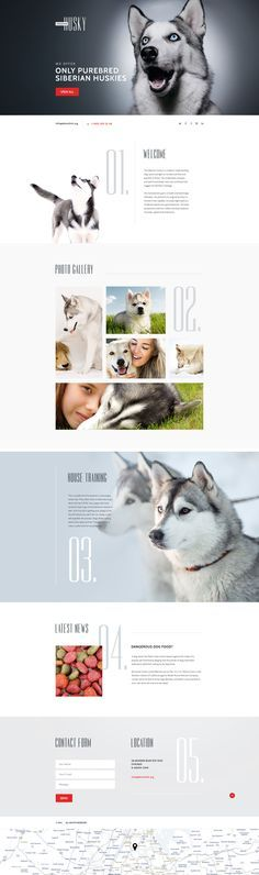 Canine Landing Page Template http://www.templatemonster.com/landing-page-template/dog-responsive-landing-page-template-58457.html