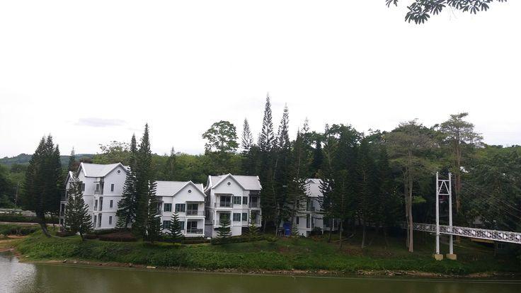 #strawberrytown #rayong #thailand #mountain #forest #สตรอเบอรี่ทาวน์ #ระยอง