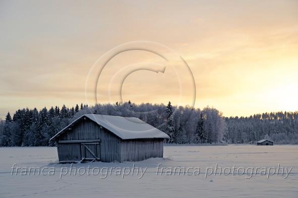 Snow frost  www.framcaphotography.com
