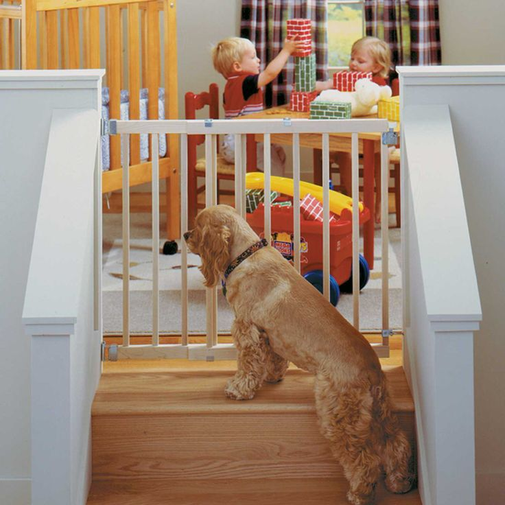 North states stairway swing pet gate petco store pet