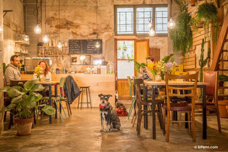 Café, galería de arte, tienda de flores... un espacio con mucho, mucho arte. Y simpatía perruna http://www.srperro.com/espai-joliu