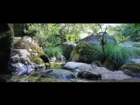 Quinta Jugais | Good Stuff-If it's good, it's here