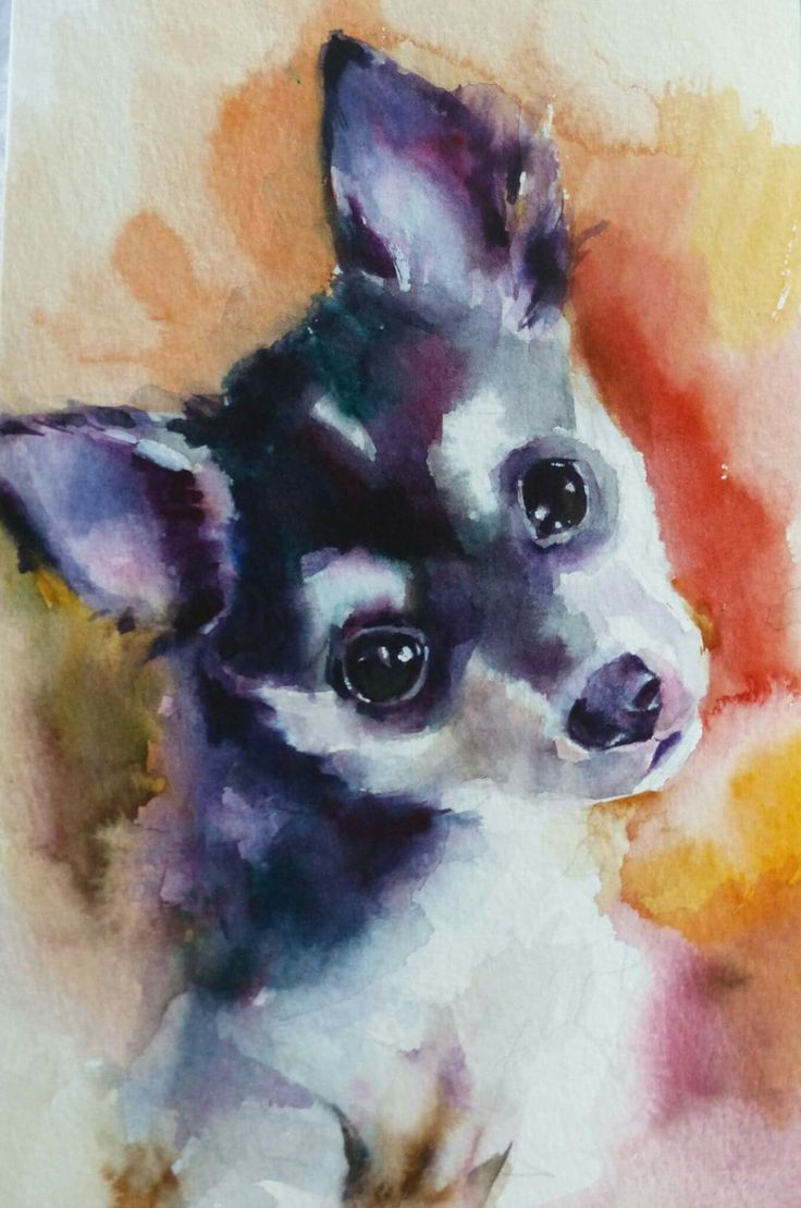 Fine watercolor art for sale - Daily Paintworks Izzy Original Fine Art For Sale Katya Minkina