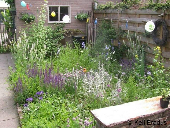 75 best tuin inspiratie images on pinterest plants. Black Bedroom Furniture Sets. Home Design Ideas