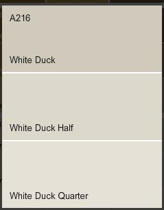 Dulux white duck paint