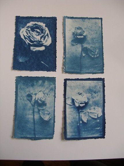 Cyanotype is a photographic printing process that produces a cyan-blue print. Engineers used the process well into the 20th century as a simple and low-cost process to produce copies of drawings, referred to as blueprints. The process uses two chemicals: ammonium iron(III) citrate and potassium ferricyanide.