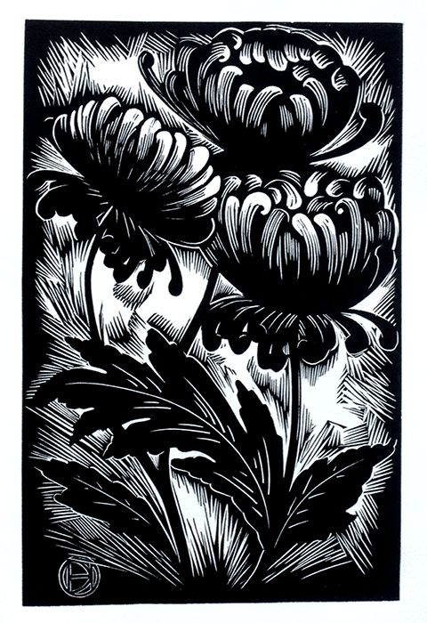 "Deborah Harris, Chrysanthemums, linoleum block print 6"" x 9"""