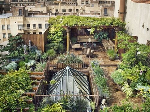Hanging roof gardens of some city.