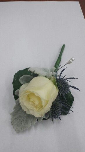 White rose with seaholly