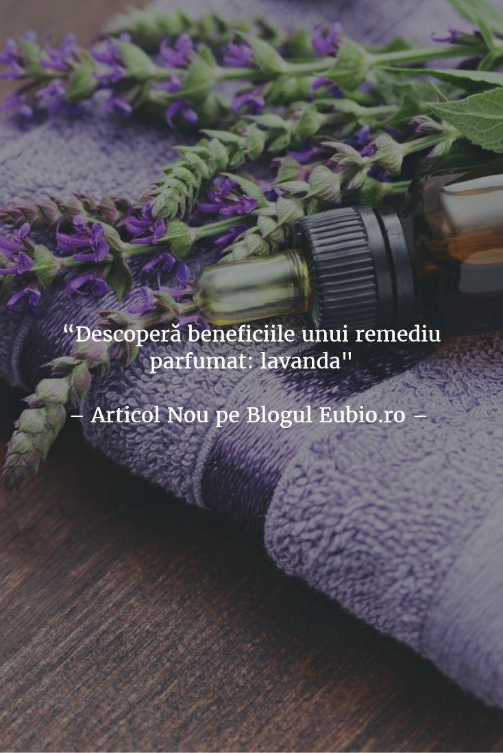 7 intrebuintari ale unui remediu parfumat: #lavanda