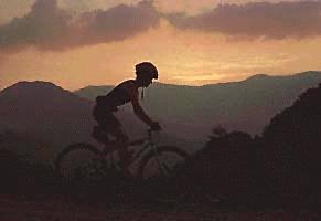 Mountain Biking Tsali