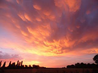 earlybirder: Sunset......