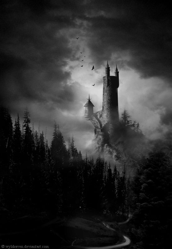 More mood setting. This could very well be my Castle Dracula coming through the Borgo Pass. The woods are prominent in my book