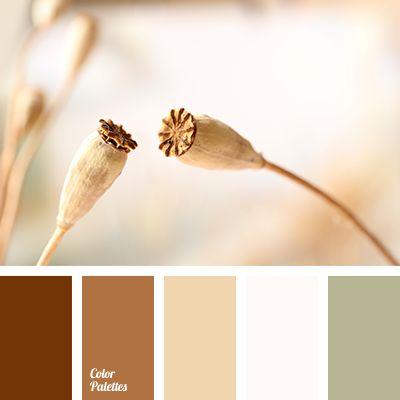 Color Palette #3601