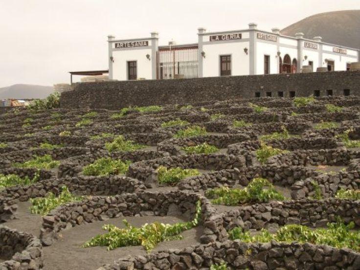 Lanzarote, La geria