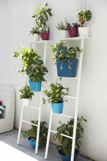 Kleurrijke mandjes voor planten. Op kleine plekjes makkelijk de hoogte in tuinieren.