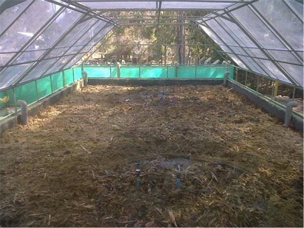 Así es como se ve un sistema de biofiltro. Lo que permite la ampliación del mercado de este sistema, esque no sólo sirve para tratamiento de aguas servidas, sino que también para residuos industriales líquidos, para empresas del rubro agroindustrial.  REF: http://www.sistematoha.cl/