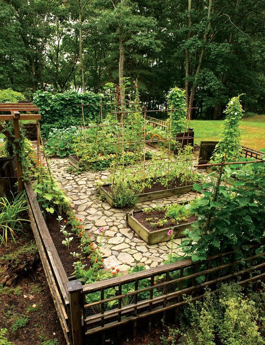 Lawn Celebration- this may be nice for the entrance backyard to make use of the entire stones l