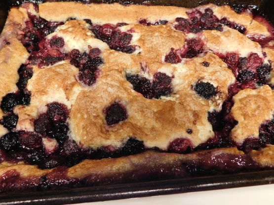 Make and share this Old Fashion Berry Cobbler recipe from Food.com.