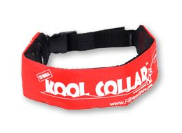 keep your dog cool this summer: Pet Products, Kool Collars, Koolcollar Dogs, Animales Pets, Doggies, Pet Animal, Dogs Outside, Collars Dogs, Dogs Parks