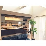 Kitchen,観葉植物,ソファー,ポスター,ダイニングテーブル,ベンチに関連する他の写真
