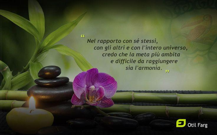 Nel rapporto con sé stessi, con gli altri e con l'intero universo, credo che la meta più ambita e difficile da raggiungere sia l'armonia. Otil Farg