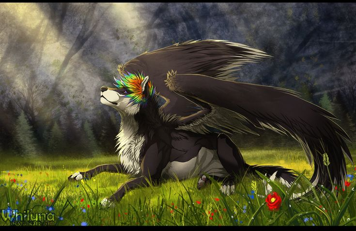 Meadow by on deviantart animated - Anime wolves in love ...