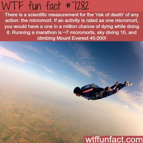 "WTF Facts : funny, interesting & weird facts — The ""risk of death"" measurement; micromort - WTF..."