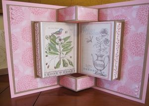 Book Fold Card (2 pics) by: michele1