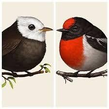 Image result for robin white prints
