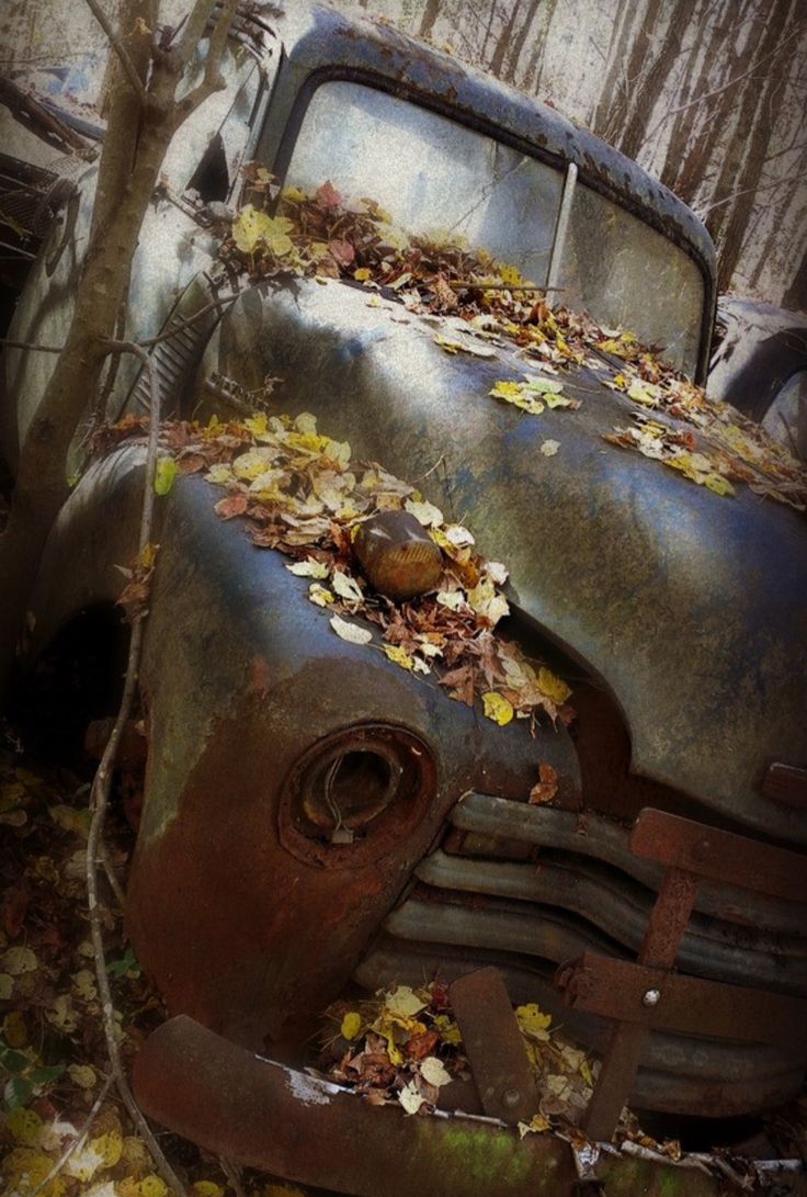 Colors of the past. Abandoned Chevy Truck. Photo by Dave. Source Flickr.com