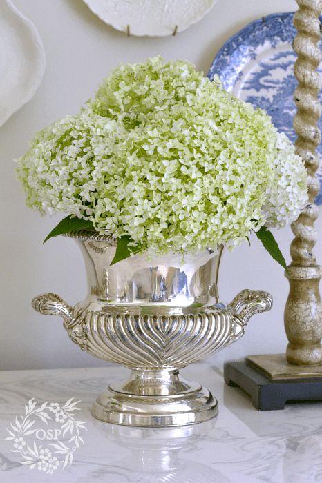 Annabelle Hydrangeas in Vintage Silver Urn