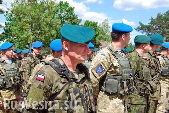 Це незалежность? В День независимости Украины по Крещатику пройдут иностранные батальоны | Русская весна