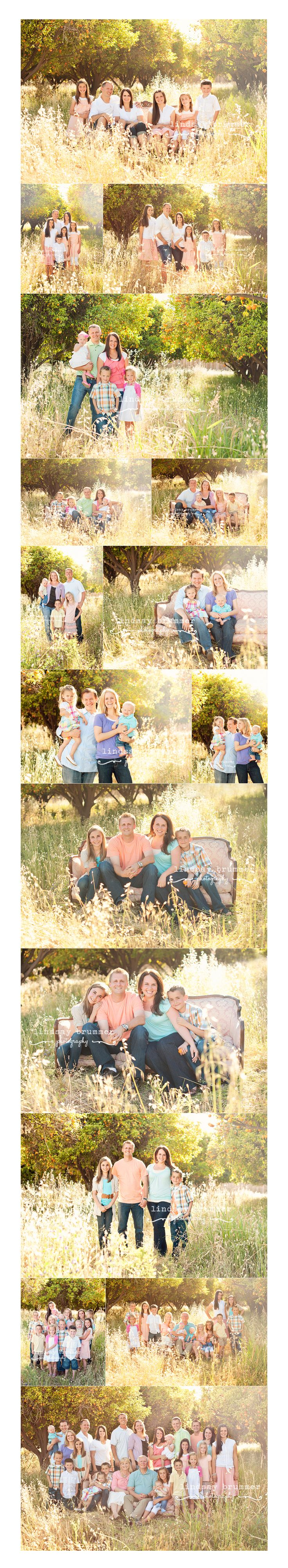 http://lindsaybrummer.com  large family session